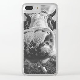 Inquisitive Cow Clear iPhone Case