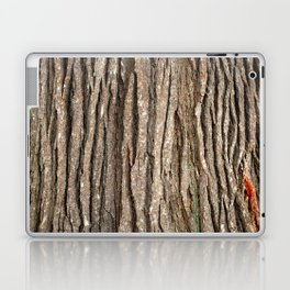 Wood bark Laptop & iPad Skin