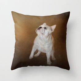 Little Beggar - White French Bulldog Throw Pillow
