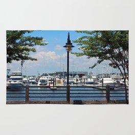 Riverfront Scene Rug