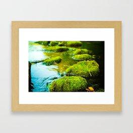 Stepping Stones Framed Art Print