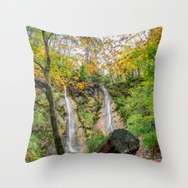 Autumn Waterfall Throw Pillow
