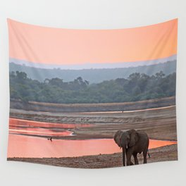 Walk in the evening light, Africa wildlife Wall Tapestry