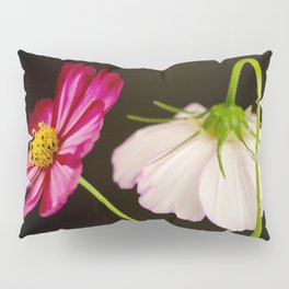 Sensation Cosmos Pillow Sham