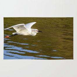A Snowy Egret flies in the morning sunlight looking for a place to fish. Rug