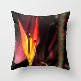 Tropical Blooms in Costa Rica Throw Pillow