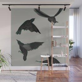 Common Starlings Wall Mural