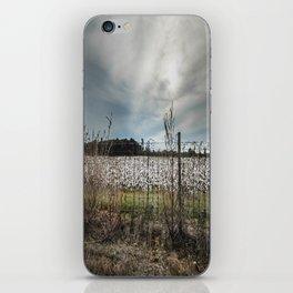 Florida Cotton Fields  iPhone Skin