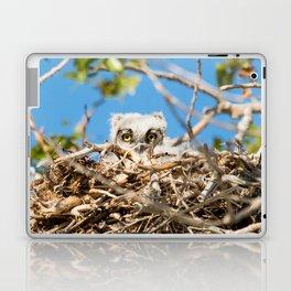 Greathorned Owlet Laptop & iPad Skin
