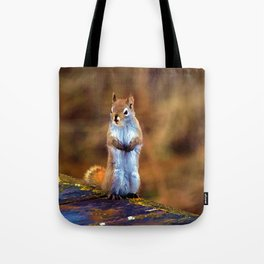 Cute Little Squirrel Artwork Tote Bag