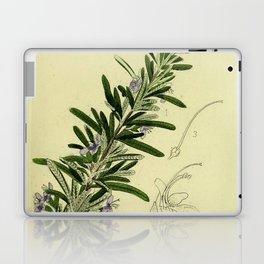 Botanical Rosemary Laptop & iPad Skin