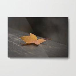 Autumn Vein Metal Print