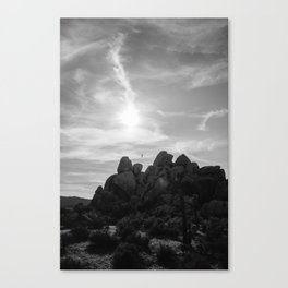 Joshua Tree National Park VII Canvas Print