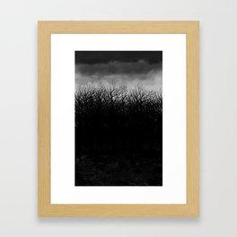 Dark Forest Framed Art Print