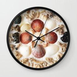 Scallops + Coral x Lucina Wall Clock