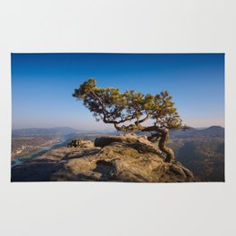 Crooked Tree in Elbe Sandstone Mountains Rug