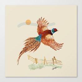 male pheasant Canvas Print
