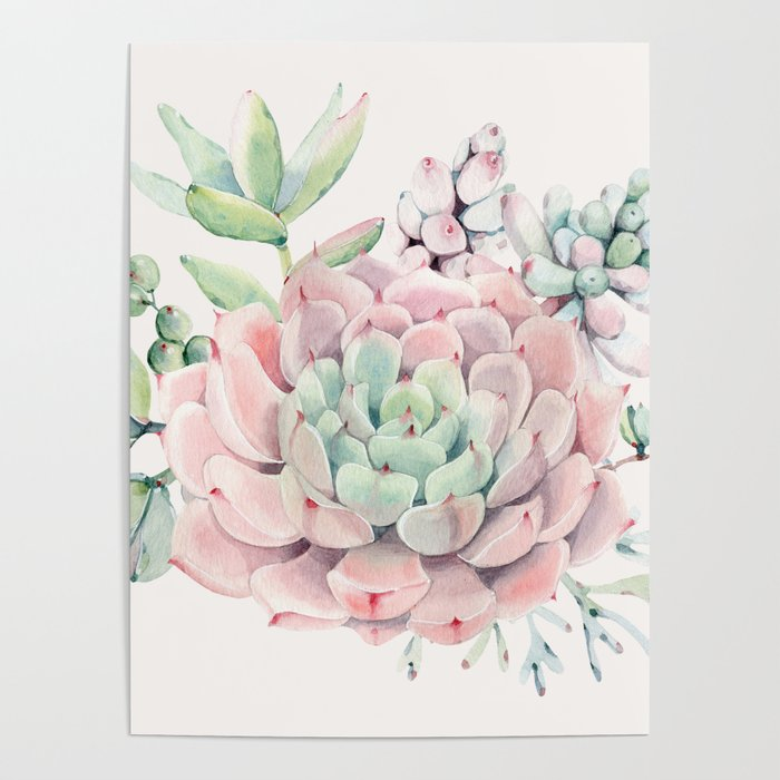 Perfect Pink Succulent Poster