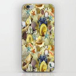 Seashells And Starfish iPhone Skin