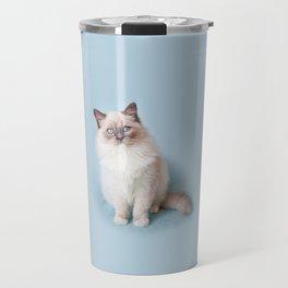 Blue eyed Ragdoll kitty sitting Travel Mug