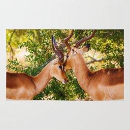 Gazelle (Color) Rug