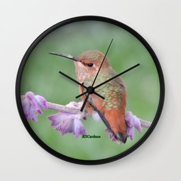 DO NOT Raid My Patch of Sage Wall Clock