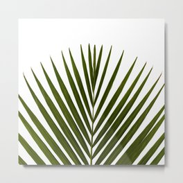 Bamboo - Tropical Botanical Print Metal Print
