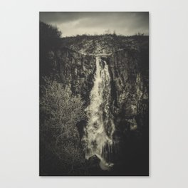 Dog´s Fall Canvas Print