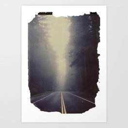 Long Road, Redwoods National Park. Instant Film Art Print