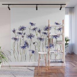 Blue Cornflowers, Illustration Wall Mural