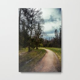 road in a forest Metal Print