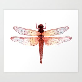 Red dragonfly Art Print