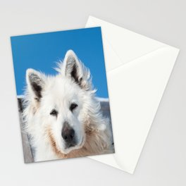 White Husky 2 Stationery Cards