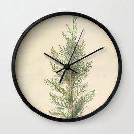 Vintage Botanical Juniper Branch Wall Clock