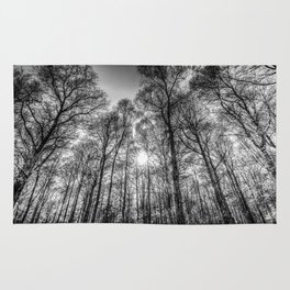 Monochrome Forest Rug