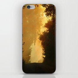 Into the Light, Landscape Art iPhone Skin