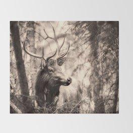 Watchful Elk Throw Blanket