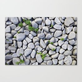 Sea Stones - Gray Rocks, Texture, Pattern Canvas Print