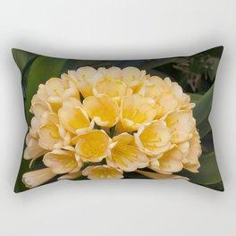 Clivia Apricot Rectangular Pillow