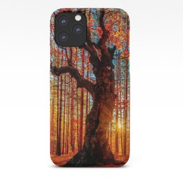 Majestic woods iPhone Case