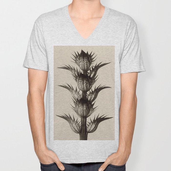 Karl Blossfeldt, Acanthus mollis Unisex V-Neck