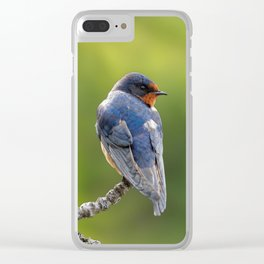Profile of a Barn Swallow Clear iPhone Case
