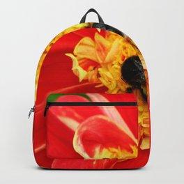 Bumble Bee On Dahlia Backpack