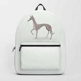 Whippet Portrait Backpack