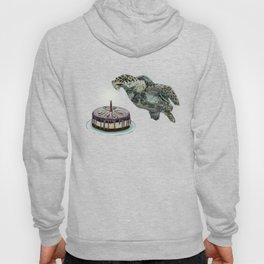 Turtle Birthday Hoody
