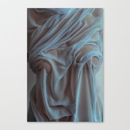 the marble Canvas Print