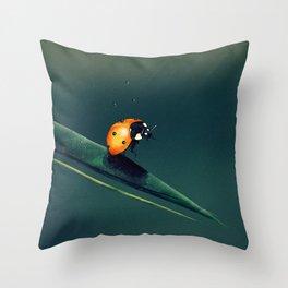 Oh, Bugger... Throw Pillow