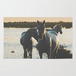 Camargue Horses III ... Rug
