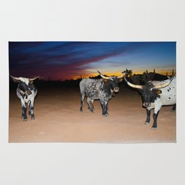 Bulls Night Out Rug
