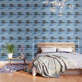 Loon love Wallpaper
